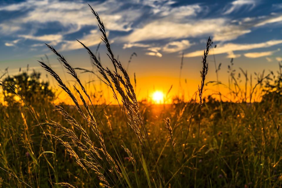 KAKVO VREME NAS OČEKUJE U JULU?